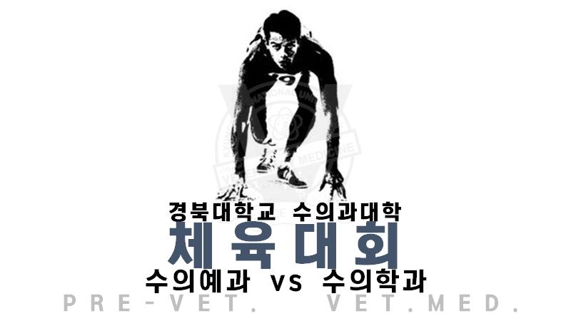 체육대회1.png